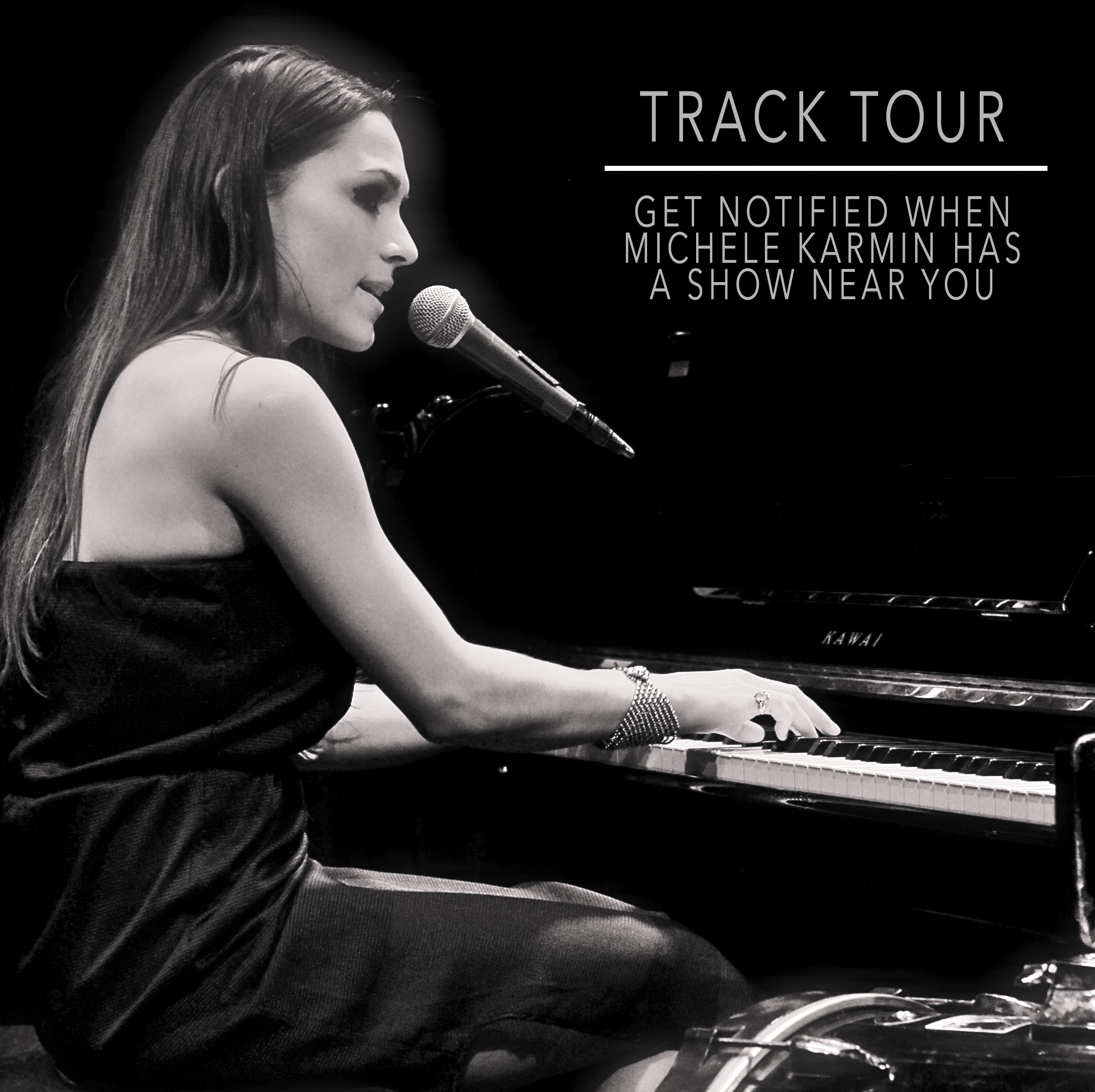 Michele Karmin Tour